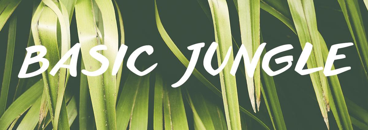 Front Image Lookbook | Basic jungle basicjunglehead